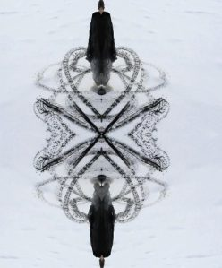 Kallio: Wasuregai-onnade calligraphy-okashi(1)